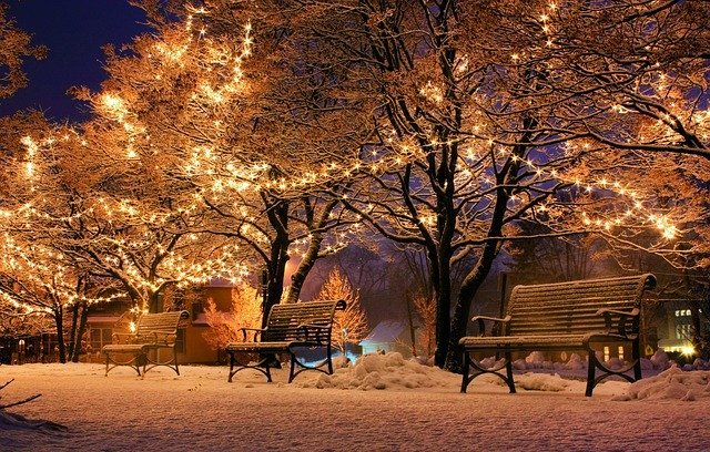 Christmas Lights In Park
